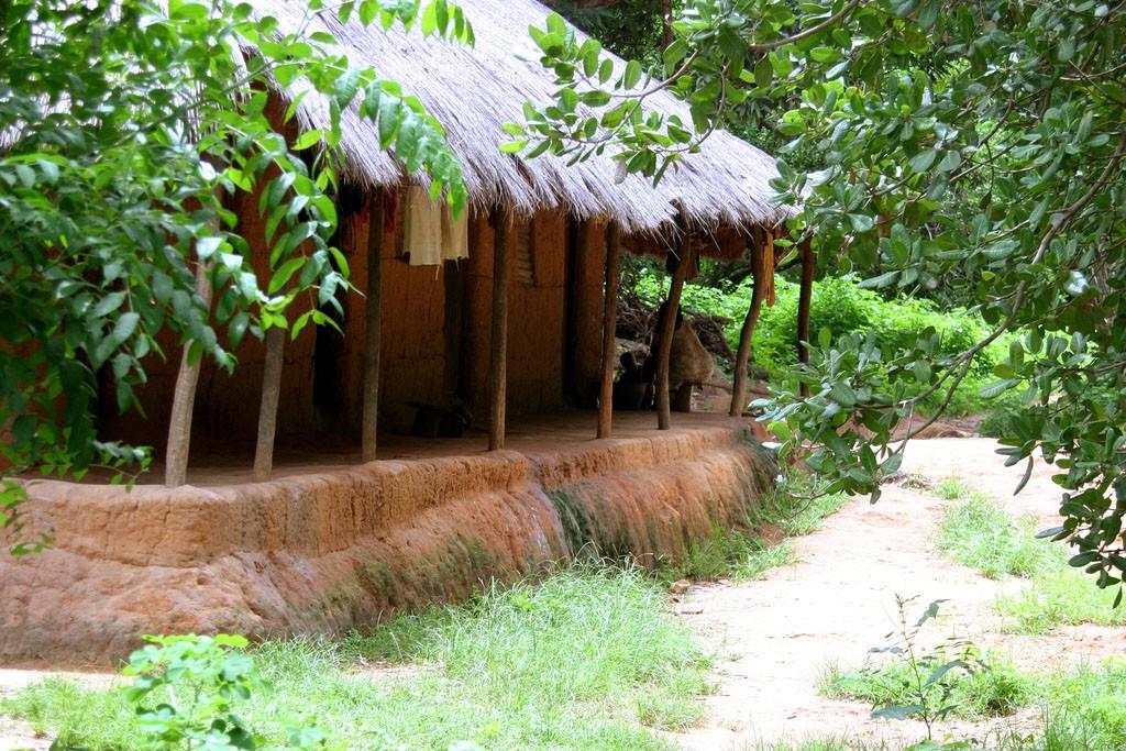 Guinea Bissau Flickr Jon Baker 1024x683 1